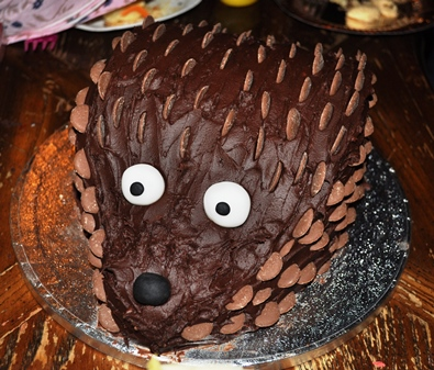 Chocolate Hedgehog Cake!